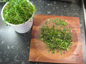 Plenty of chopped up fresh thyme