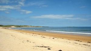 Sunny beach walks