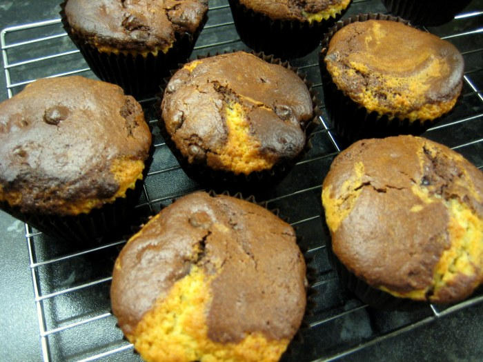 Super Easy Chocolate and Vanilla Mix Muffins