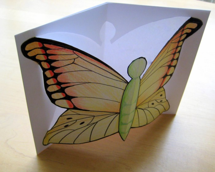 Pop up Butterfly Card