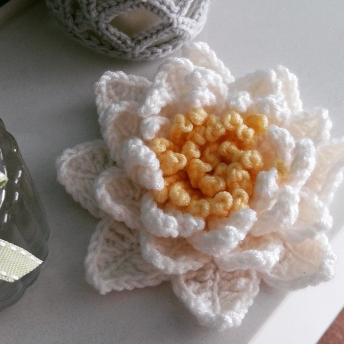 Did you spot this on Instagram? Click here for my free Waterlily Pattern